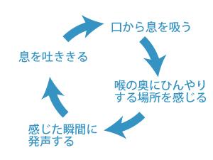 呼吸と発声の正しいサイクル