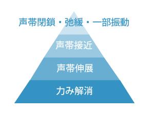 声帯機能のピラミッド